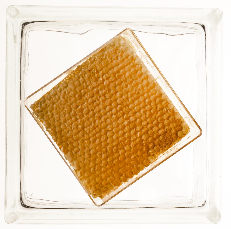 Honey Product Photography